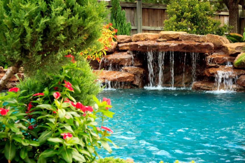 Plants That Keep Bugs Out of Your Swimming Pool